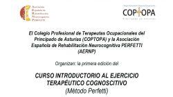 Curso Introductorio al Ejercicio Terapéutico Cognoscitivo (Método Perfetti)