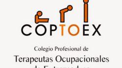 Apoyo para la adaptación de la FP para personas con discapacidad