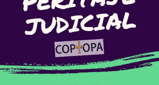Curso Peritaje Judicial