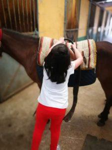 niña colocando monturas al caballo